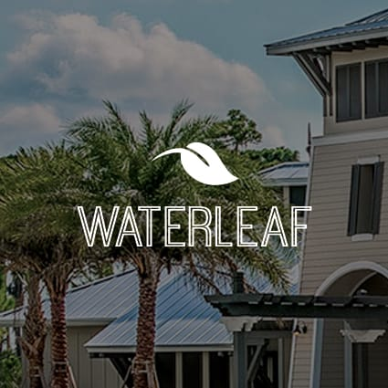 Waterleaf community icon