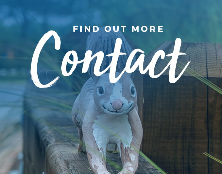 contact page mobile header